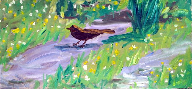 Bird on path by Tadhg McSweeney