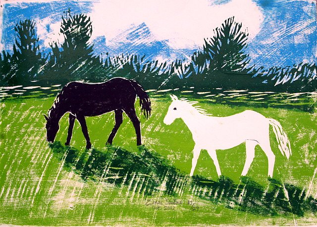 Black pony, white pony by Tadhg McSweeney