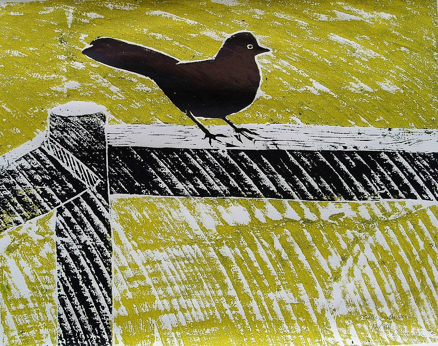 Blackbird on fence by Tadhg McSweeney