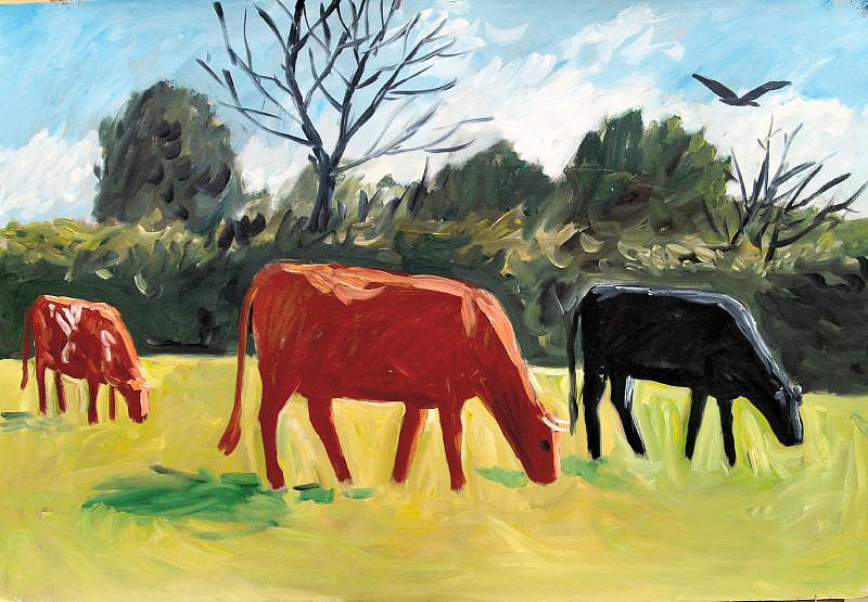 Cattle Grazing 1 by Tadhg McSweeney