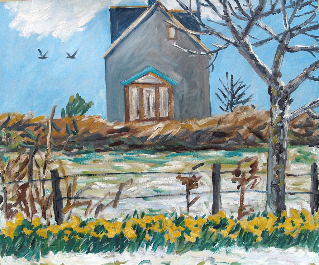 Daffodils and snow by Tadhg McSweeney