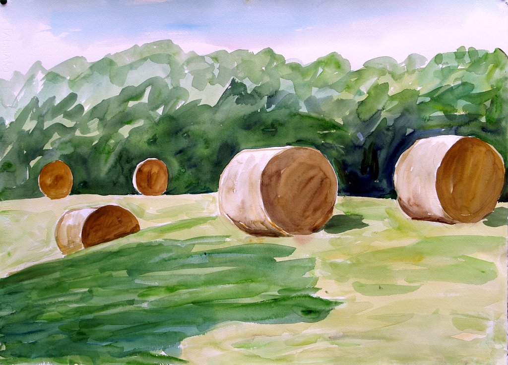 5 hay bales by Tadhg McSweeney