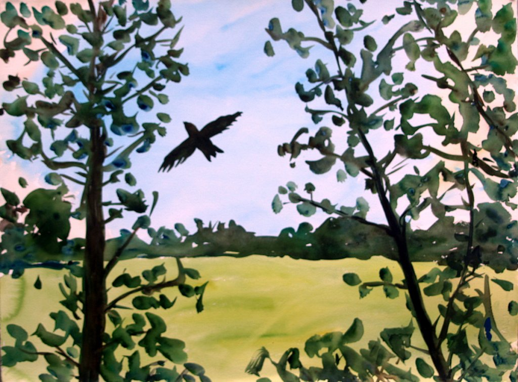 Flight by Tadhg McSweeney