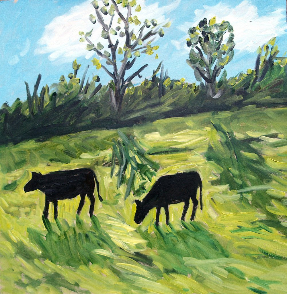 Kerry cattle by Tadgh McSweeney