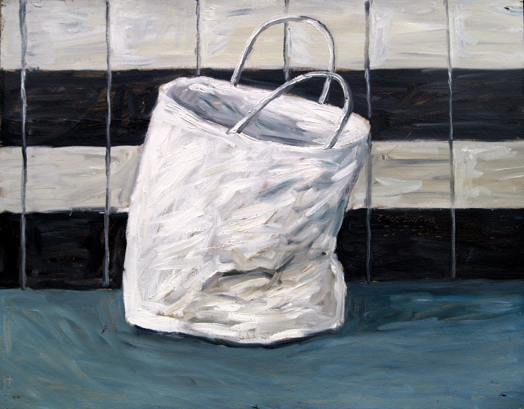 Paper shopping bag by Tadgh McSweeney
