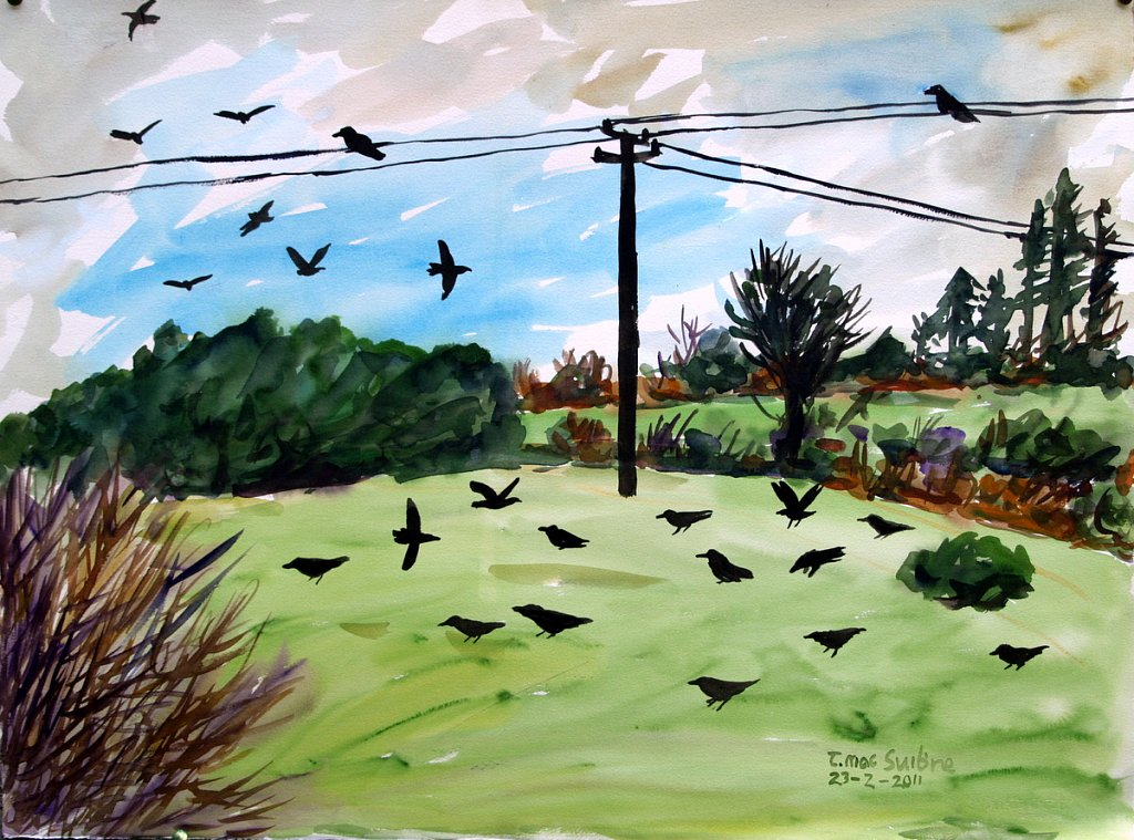 powerline with crows by Tadhg McSweeney