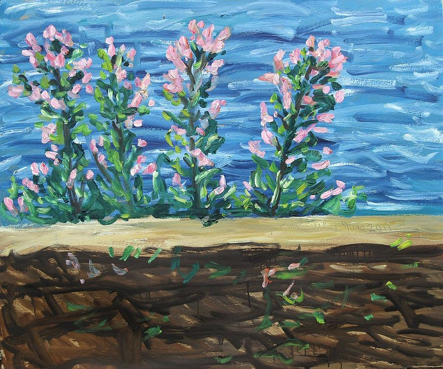 Sea wall with valerian by Tadgh McSweeney