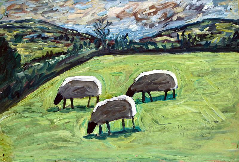 Three sheep by Tadgh McSweeney