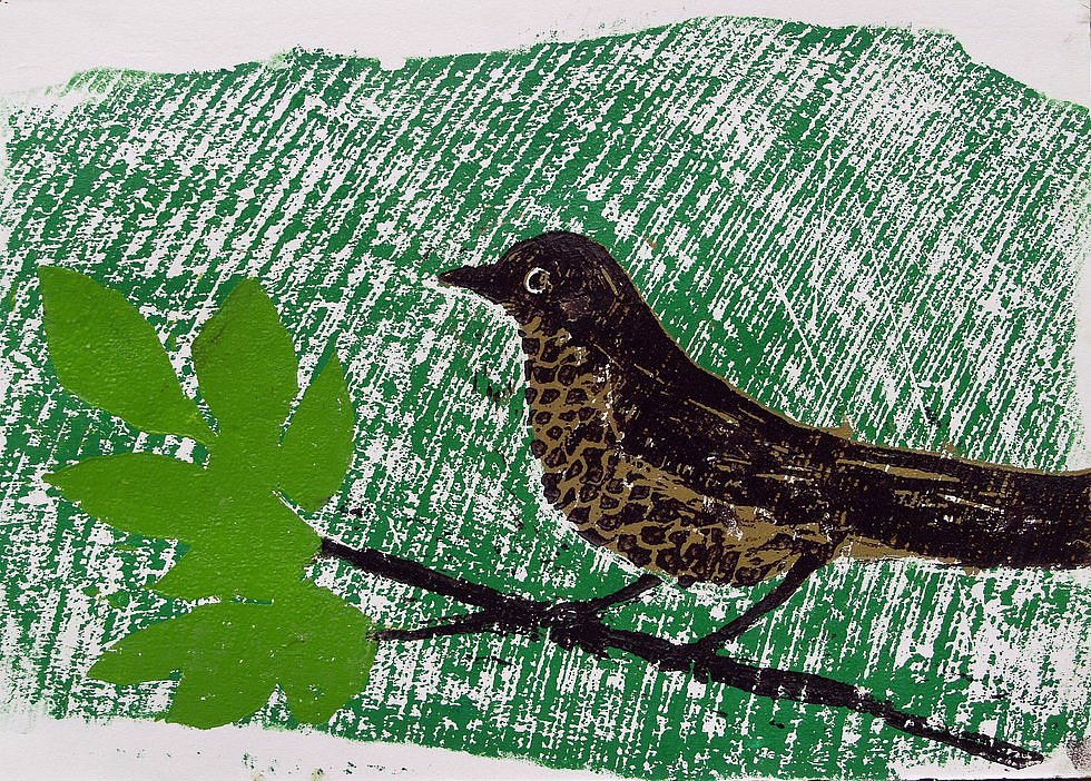 Thrush on branch by Tadhg McSweeney