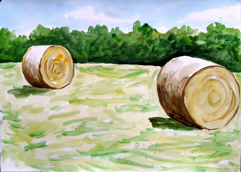 2 hay bales by Tadhg McSweeney