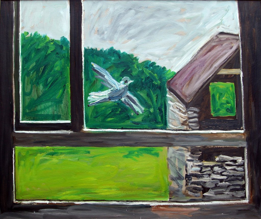 window with pigeon by Tadgh McSweeney