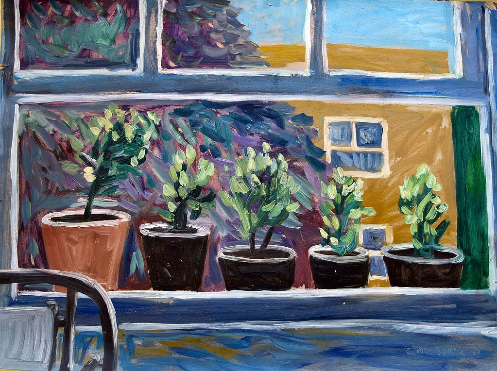 Window with potted plants 1 by Tadgh McSweeney